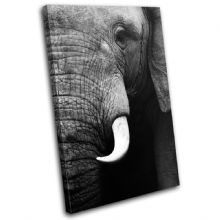 Elephant Wildlife Animals - 13-1601(00B)-SG32-PO